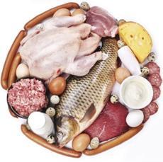 photo-of-protein-foods.jpg