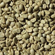 portrait-of-fresh-green-coffee-beans.jpg