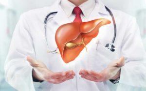 photo-of-doctor-with-liver.jpg