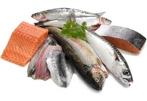 Fresh Salmon, Tuna and Mackerel